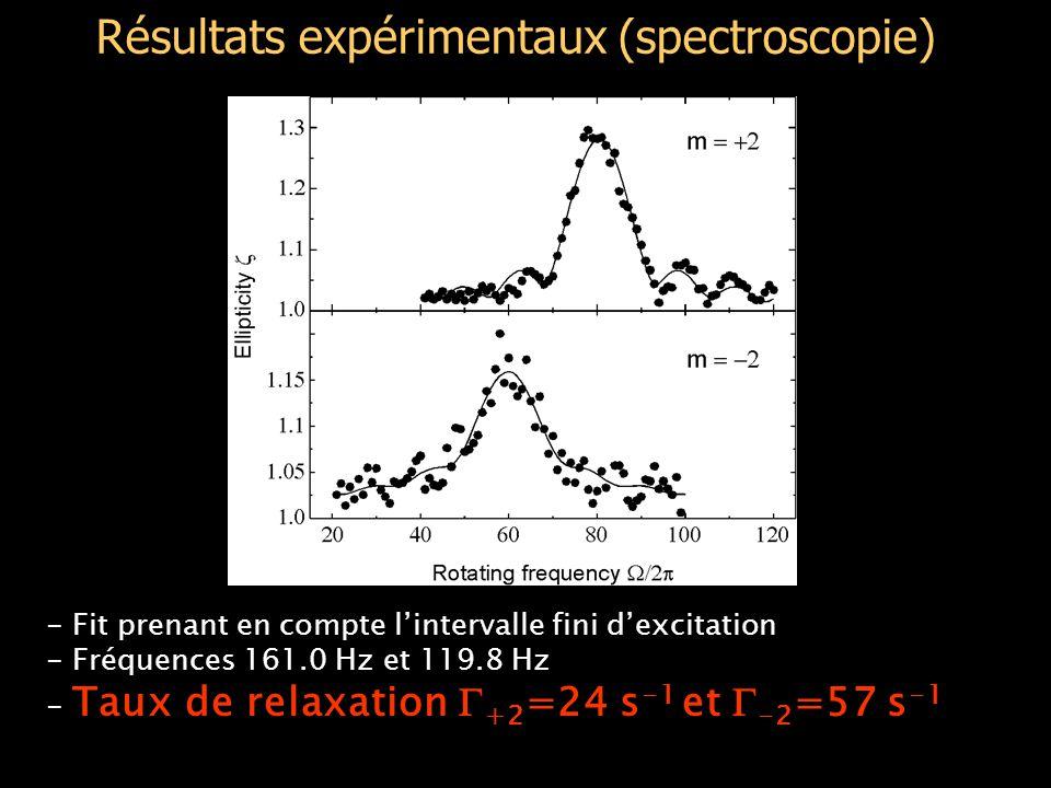 Résultats expérimentaux (spectroscopie) - Fit prenant en compte l'intervalle fini d'excitation - Fréquences 161.0 Hz et 119.8 Hz - Taux de relaxation  +2 =24 s -1 et  -2 =57 s -1