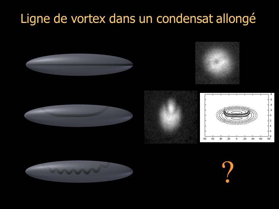 Ligne de vortex dans un condensat allongé ?