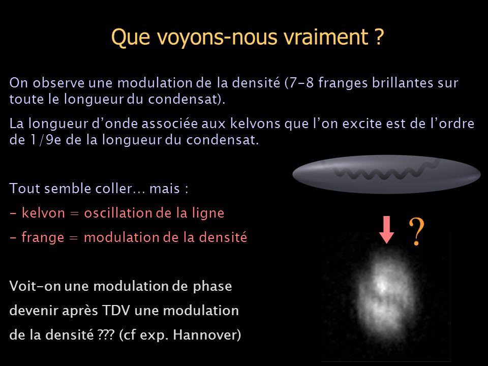 Que voyons-nous vraiment ? On observe une modulation de la densité (7-8 franges brillantes sur toute le longueur du condensat). La longueur d'onde ass