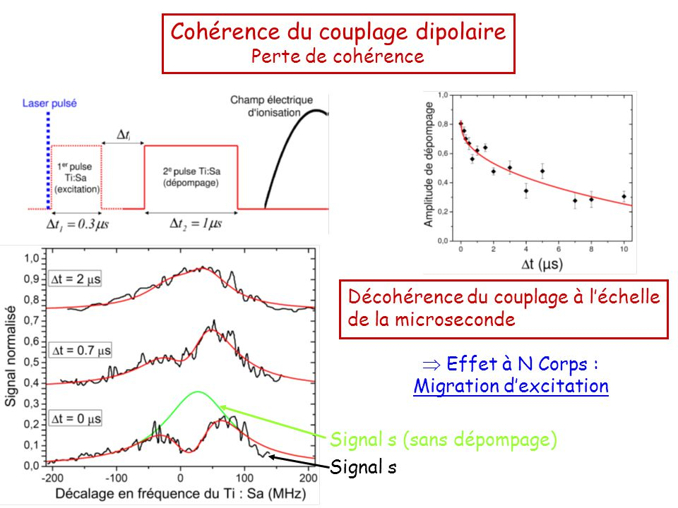 Cohérence du couplage dipolaire Perte de cohérence Signal s Décohérence du couplage à l'échelle de la microseconde  Effet à N Corps : Migration d'excitation Signal s (sans dépompage)
