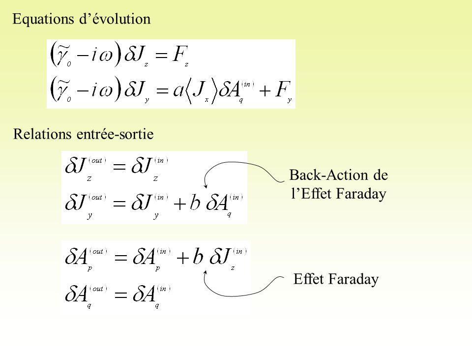 Equations d'évolution Relations entrée-sortie Effet Faraday Back-Action de l'Effet Faraday