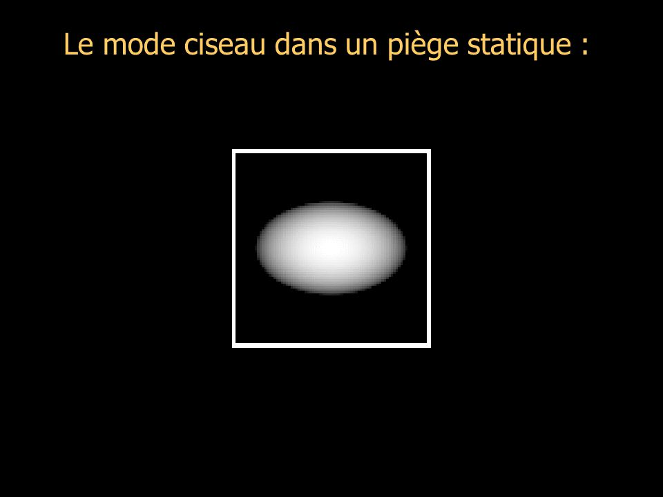 Le mode ciseau dans un piège statique Taille effective d'un pixel : 2.76 µm Caméra penchée Faisceaux petits Equations Hydrodynamiques (BEC dans T.F.): Recherche de solutions peu déformées (seulement tournées) pour de faibles angles : BECGaz classique hydro.