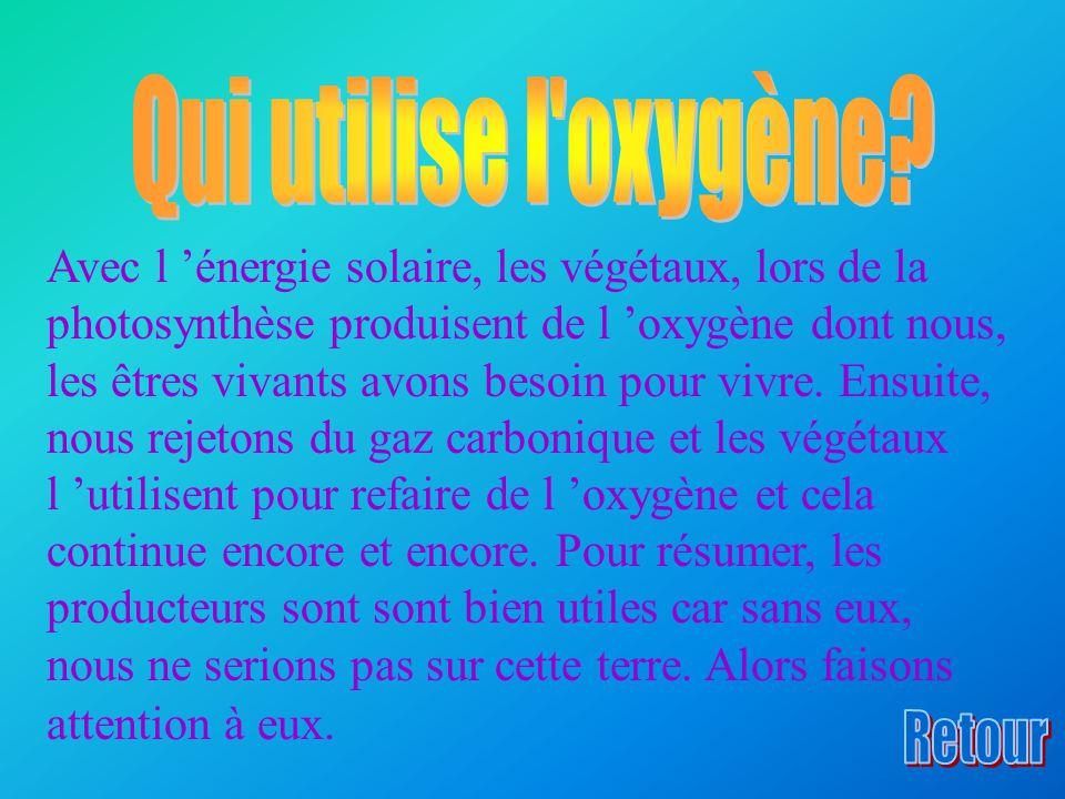Avec l 'énergie solaire, les végétaux, lors de la photosynthèse produisent de l 'oxygène dont nous, les êtres vivants avons besoin pour vivre.