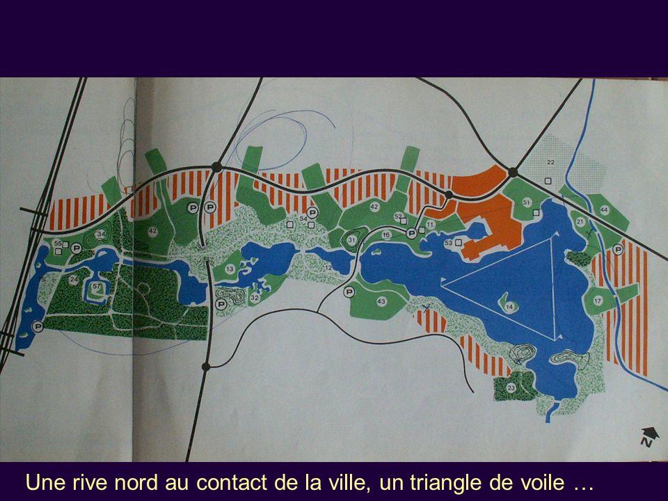 Une rive nord au contact de la ville, un triangle de voile …