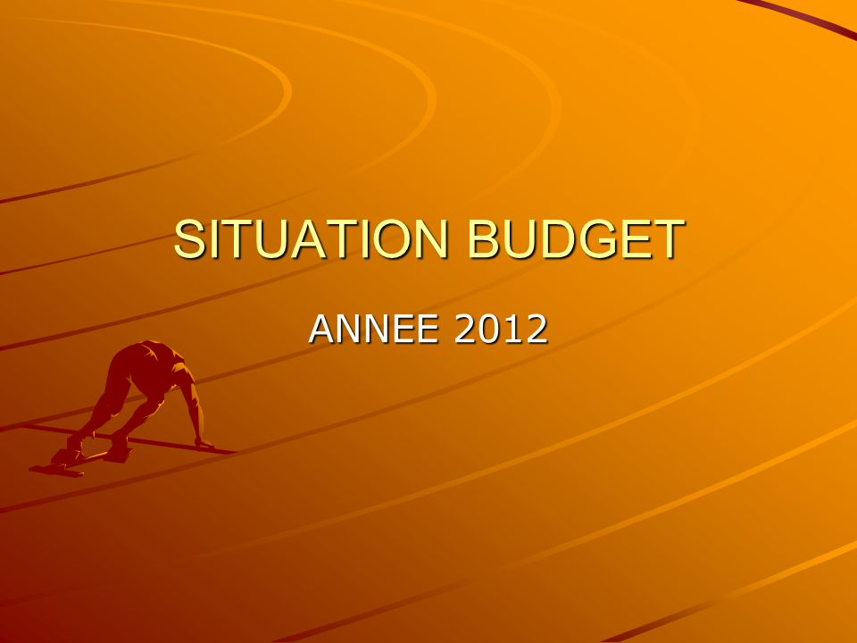 SITUATION BUDGET ANNEE 2012