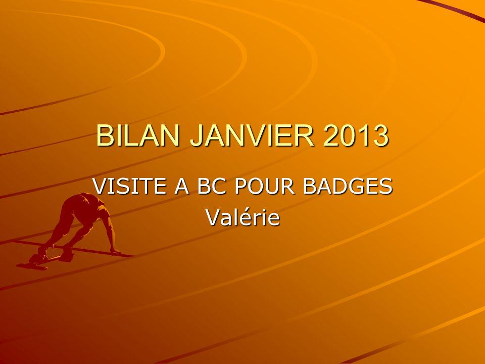 BILAN JANVIER 2013 VISITE A BC POUR BADGES Valérie