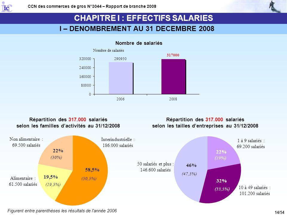 14/54 CHAPITRE I : EFFECTIFS SALARIES I – DENOMBREMENT AU 31 DECEMBRE 2008 CCN des commerces de gros N°3044 – Rapport de branche 2008 Nombre de salari