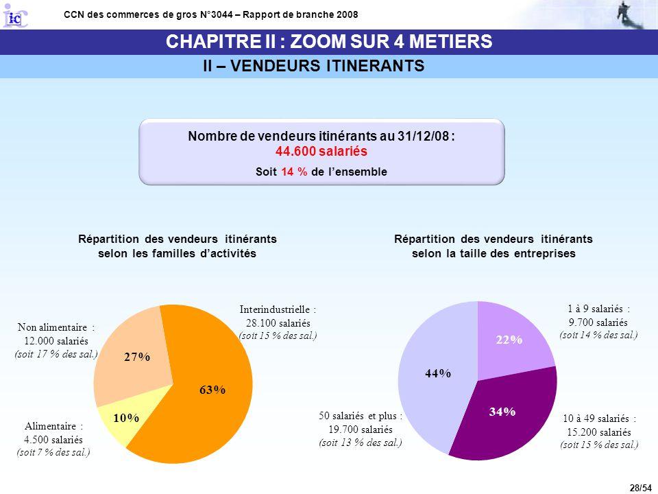 28/54 CHAPITRE II : ZOOM SUR 4 METIERS CCN des commerces de gros N°3044 – Rapport de branche 2008 II – VENDEURS ITINERANTS Répartition des vendeurs it
