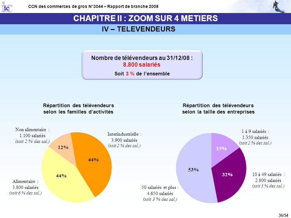 36/54 CHAPITRE II : ZOOM SUR 4 METIERS CCN des commerces de gros N°3044 – Rapport de branche 2008 IV – TELEVENDEURS Répartition des télévendeurs selon