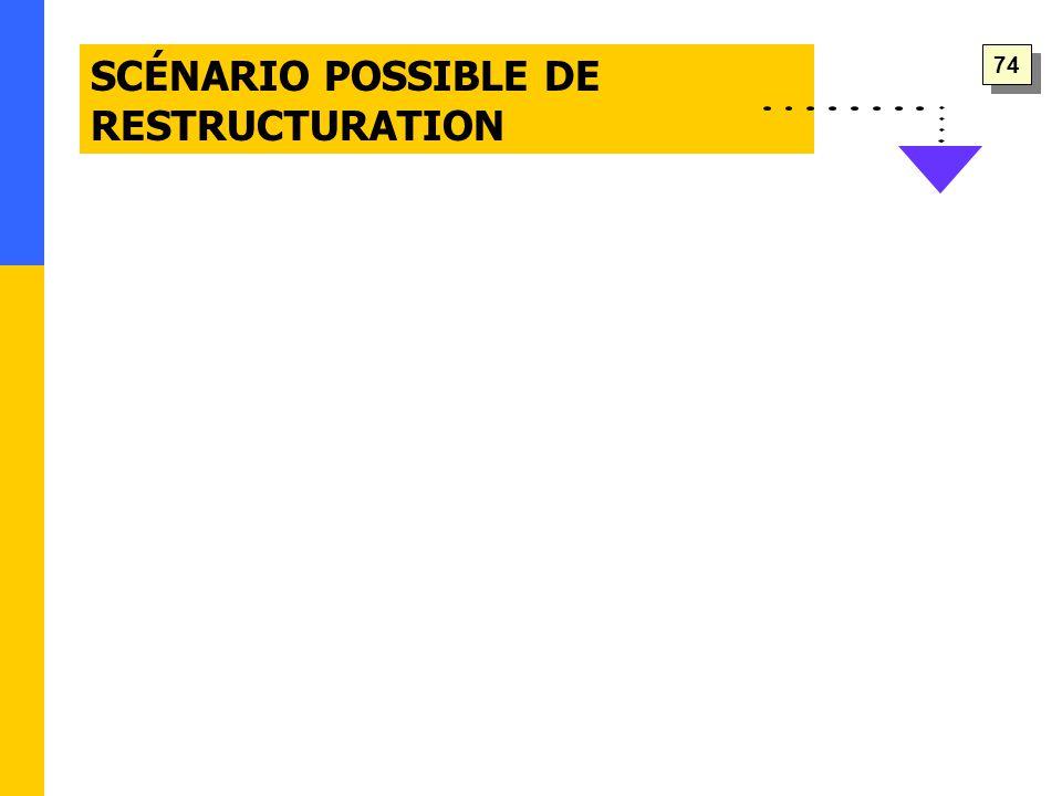 SCÉNARIO POSSIBLE DE RESTRUCTURATION 74
