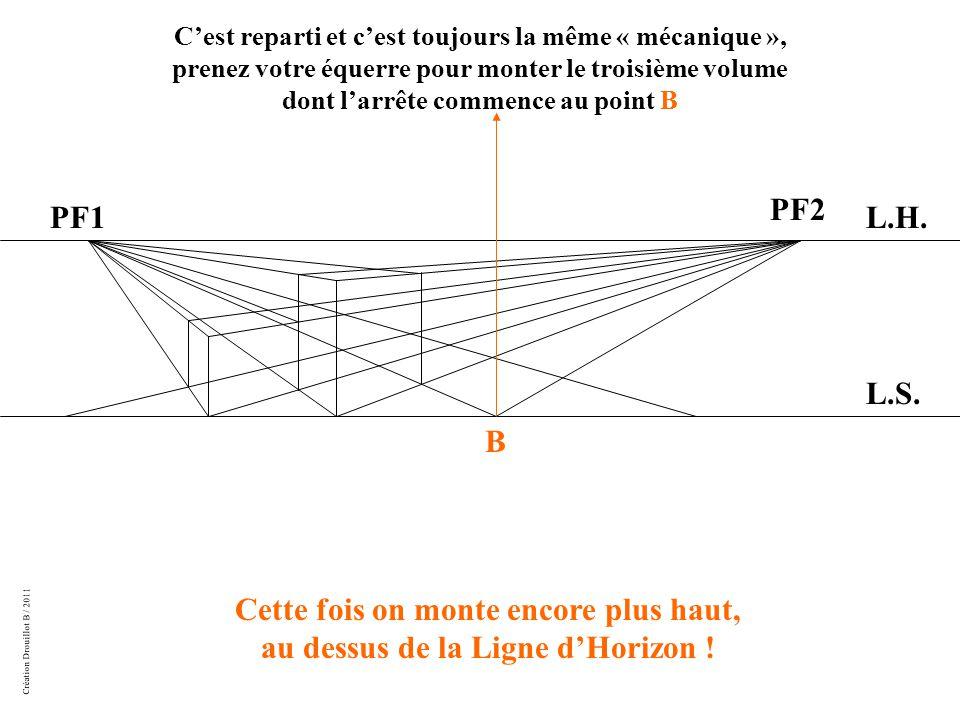 Création Drouillot B / 2011 L.H. L.S.