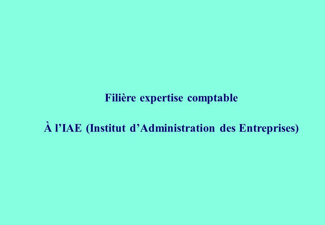 Filière expertise comptable À l'IAE (Institut d'Administration des Entreprises)