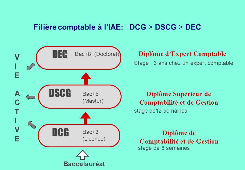 Filière comptable à l'IAE: DCG > DSCG > DEC DSCG DEC Stage : 3 ans chez un expert comptable stage de12 semaines DCG Diplôme d'Expert Comptable Diplôme
