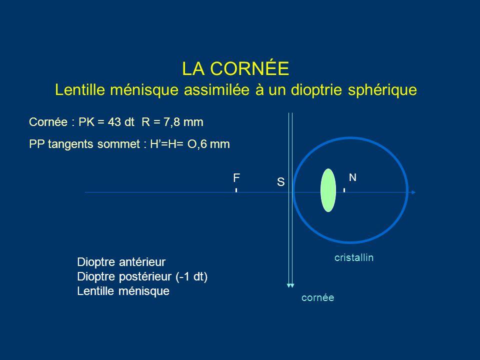 LA CORNÉE Lentille ménisque assimilée à un dioptrie sphérique cornée cristallin Cornée : PK = 43 dt R = 7,8 mm PP tangents sommet : H'=H= O,6 mm F N S Dioptre antérieur Dioptre postérieur (-1 dt) Lentille ménisque