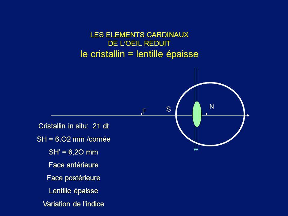 LES ELEMENTS CARDINAUX DE L'OEIL REDUIT le cristallin = lentille épaisse Cristallin in situ: 21 dt SH = 6,O2 mm /cornée SH' = 6,2O mm Face antérieure
