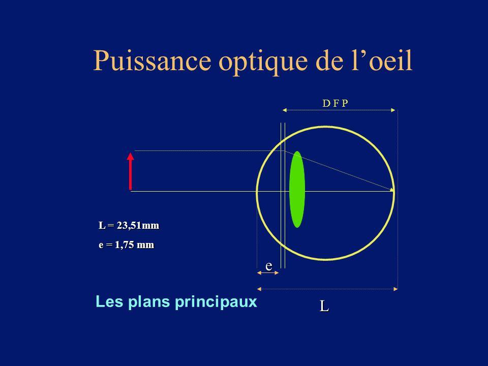 Puissance optique de l'oeil Les plans principaux D F P e L L = 23,51mm e = 1,75 mm