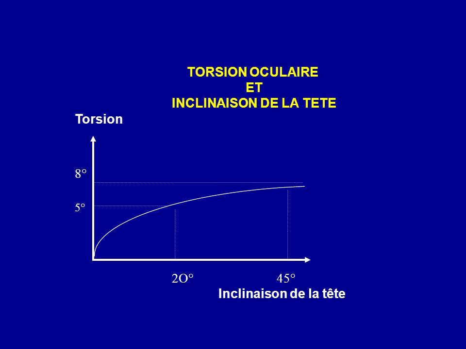 TORSION OCULAIRE ET INCLINAISON DE LA TETE 5° 8° Inclinaison de la tête Torsion 2O°45°