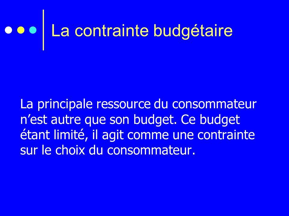 La principale ressource du consommateur n'est autre que son budget. Ce budget étant limité, il agit comme une contrainte sur le choix du consommateur.