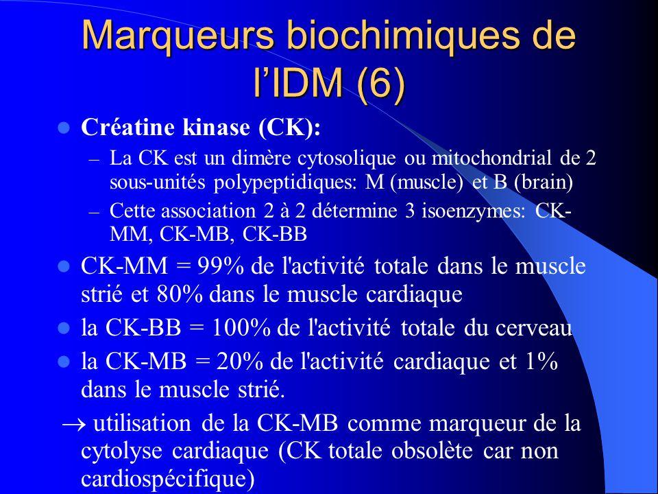 Marqueurs biochimiques de l'IDM (6) Créatine kinase (CK): – La CK est un dimère cytosolique ou mitochondrial de 2 sous-unités polypeptidiques: M (musc