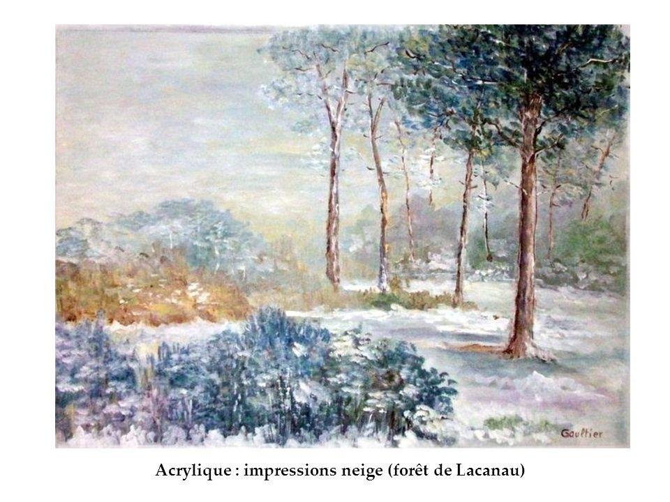 Acrylique : impressions neige (forêt de Lacanau)