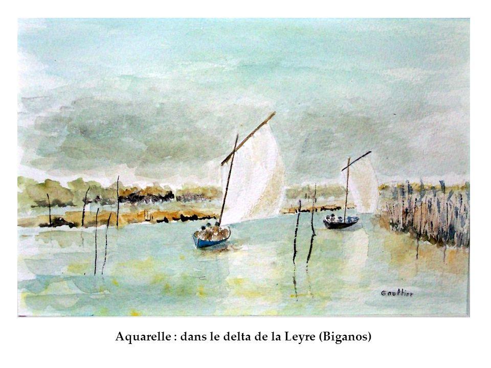 Aquarelle : dans le delta de la Leyre (Biganos)