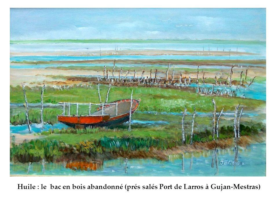 Huile : le bac en bois abandonné (prés salés Port de Larros à Gujan-Mestras)