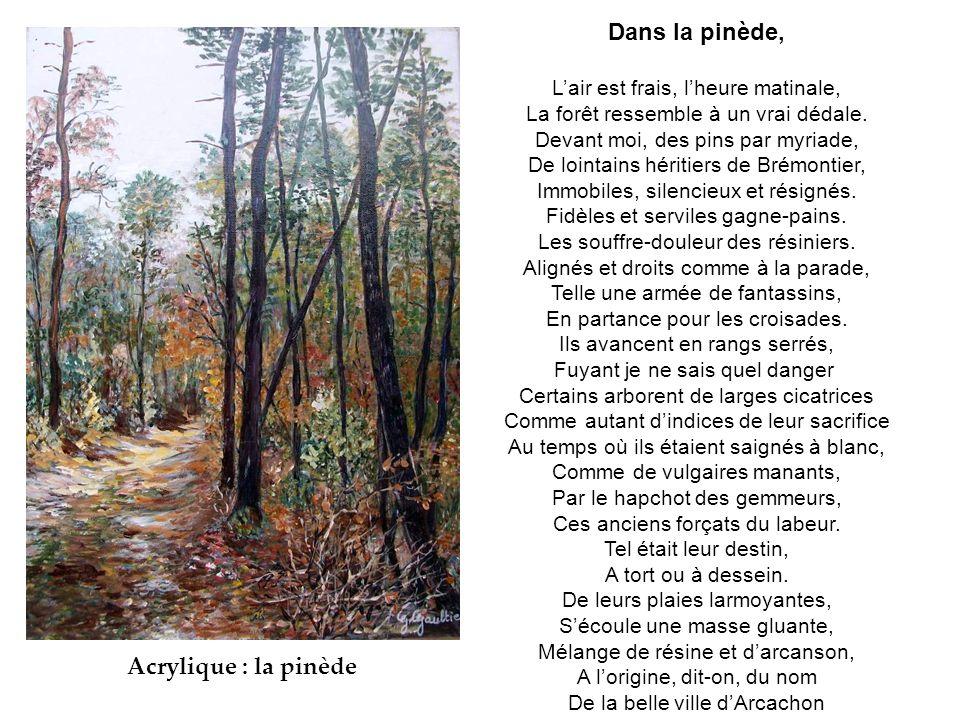 Dans la pinède, L'air est frais, l'heure matinale, La forêt ressemble à un vrai dédale.
