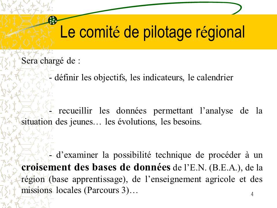 5 Le comit é de pilotage r é gional -de réaliser un état des lieux, au niveau de chaque bassin, des modalités d'échanges et de coopération entre les différentes structures et dispositifs -d'élaborer des outils communs… -de prévoir des actions de formation