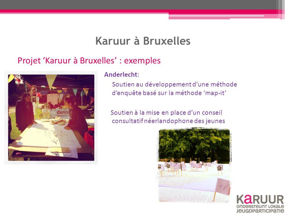 Karuur à Bruxelles Anderlecht: Soutien au développement d'une méthode d'enquête basé sur la méthode 'map-it' Soutien à la mise en place d'un conseil c
