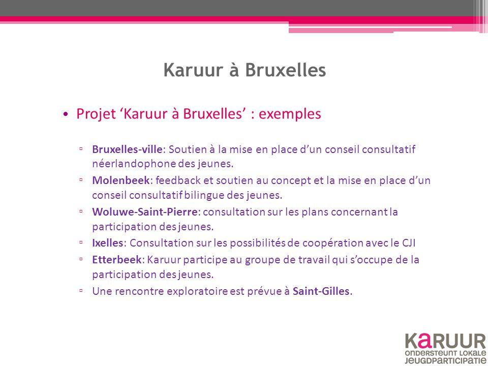Karuur à Bruxelles Projet 'Karuur à Bruxelles' : exemples ▫ Bruxelles-ville: Soutien à la mise en place d'un conseil consultatif néerlandophone des je