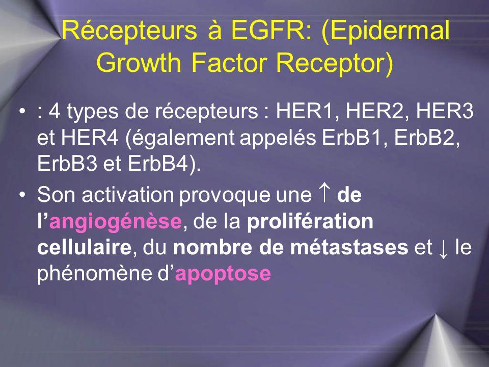 Récepteurs à EGFR: (Epidermal Growth Factor Receptor) : 4 types de récepteurs : HER1, HER2, HER3 et HER4 (également appelés ErbB1, ErbB2, ErbB3 et Erb