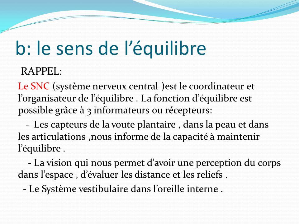 b: le sens de l'équilibre RAPPEL: Le SNC (système nerveux central )est le coordinateur et l'organisateur de l'équilibre.