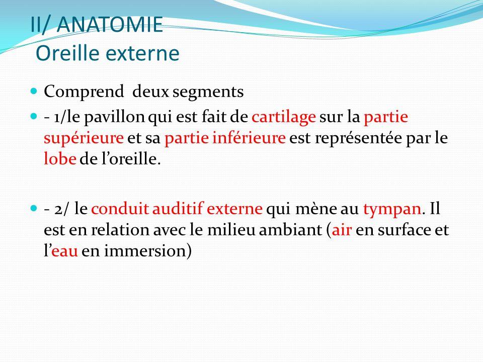 II/ ANATOMIE Oreille externe Comprend deux segments - 1/le pavillon qui est fait de cartilage sur la partie supérieure et sa partie inférieure est représentée par le lobe de l'oreille.
