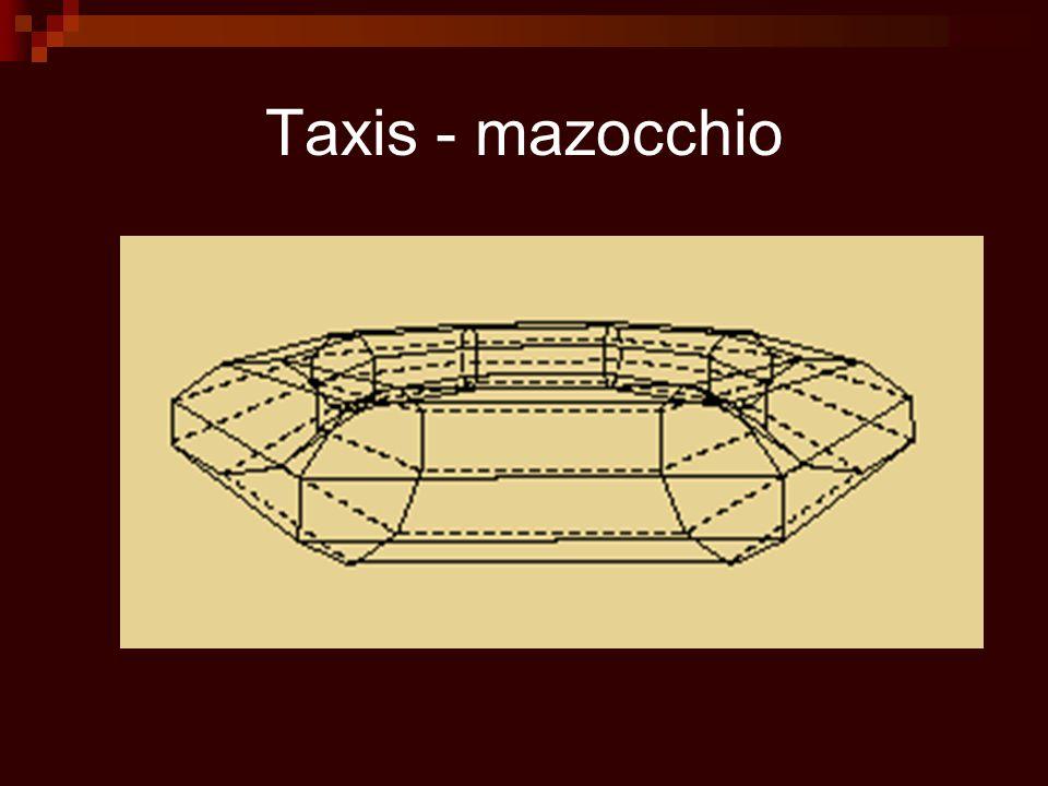 Schéma de taxis par Sebastiano Serlio Réversibilité des formes.
