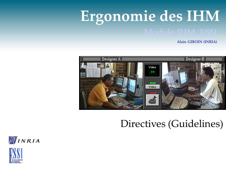 Directives (Guidelines) Terminologie  Guideline Directive, indication d une politique à suivre.