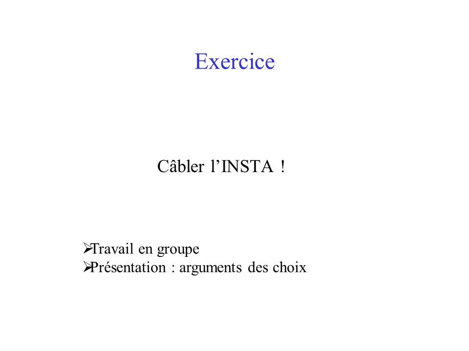 Exercice Câbler l'INSTA !  Travail en groupe  Présentation : arguments des choix