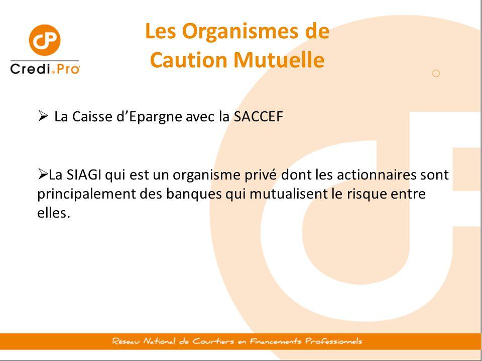 Les Organismes de Caution Mutuelle  La Caisse d'Epargne avec la SACCEF  La SIAGI qui est un organisme privé dont les actionnaires sont principalemen