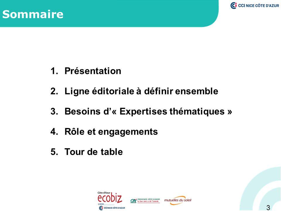 3 Sommaire 1.Présentation 2.Ligne éditoriale à définir ensemble 3.Besoins d'« Expertises thématiques » 4.Rôle et engagements 5.Tour de table