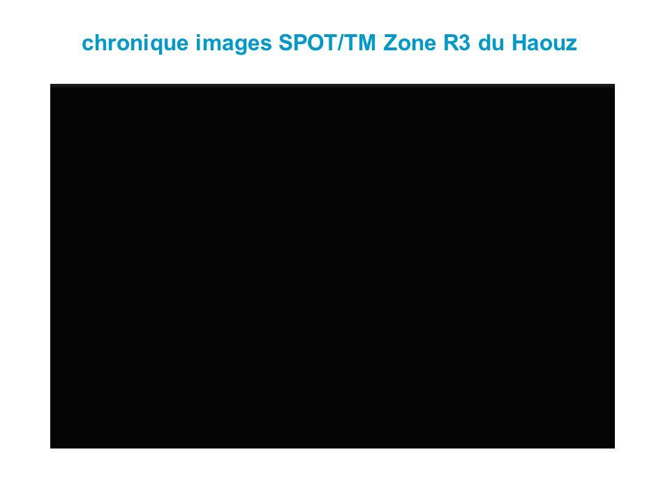 chronique images SPOT/TM Zone R3 du Haouz