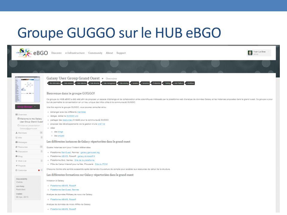 Groupe GUGGO sur le HUB eBGO