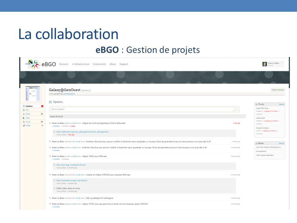 La collaboration eBGO : Gestion de projets