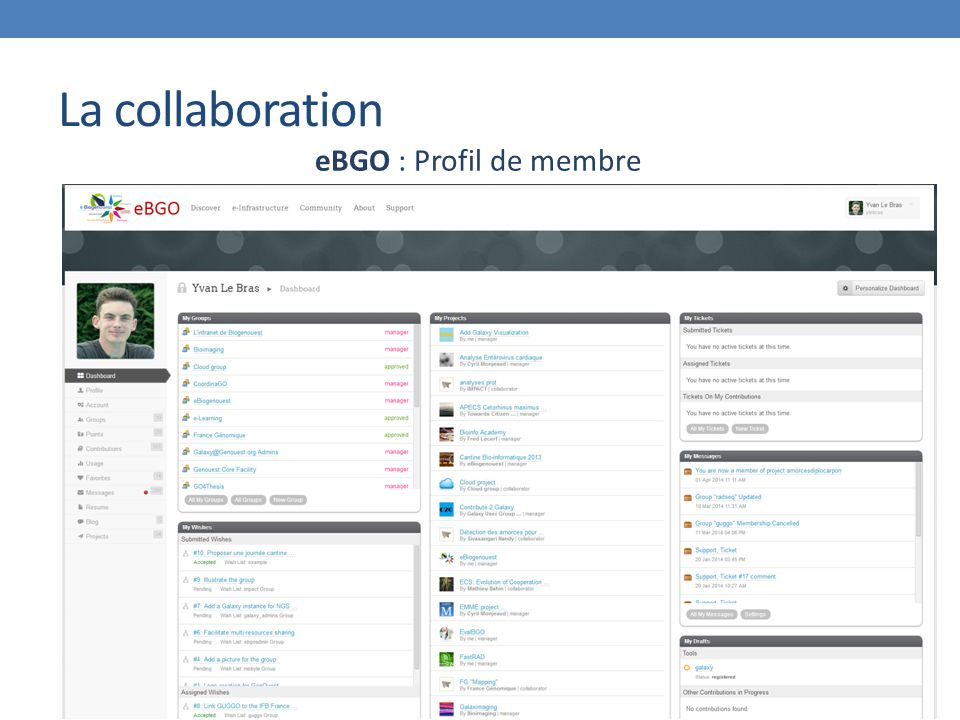 La collaboration eBGO : Profil de membre