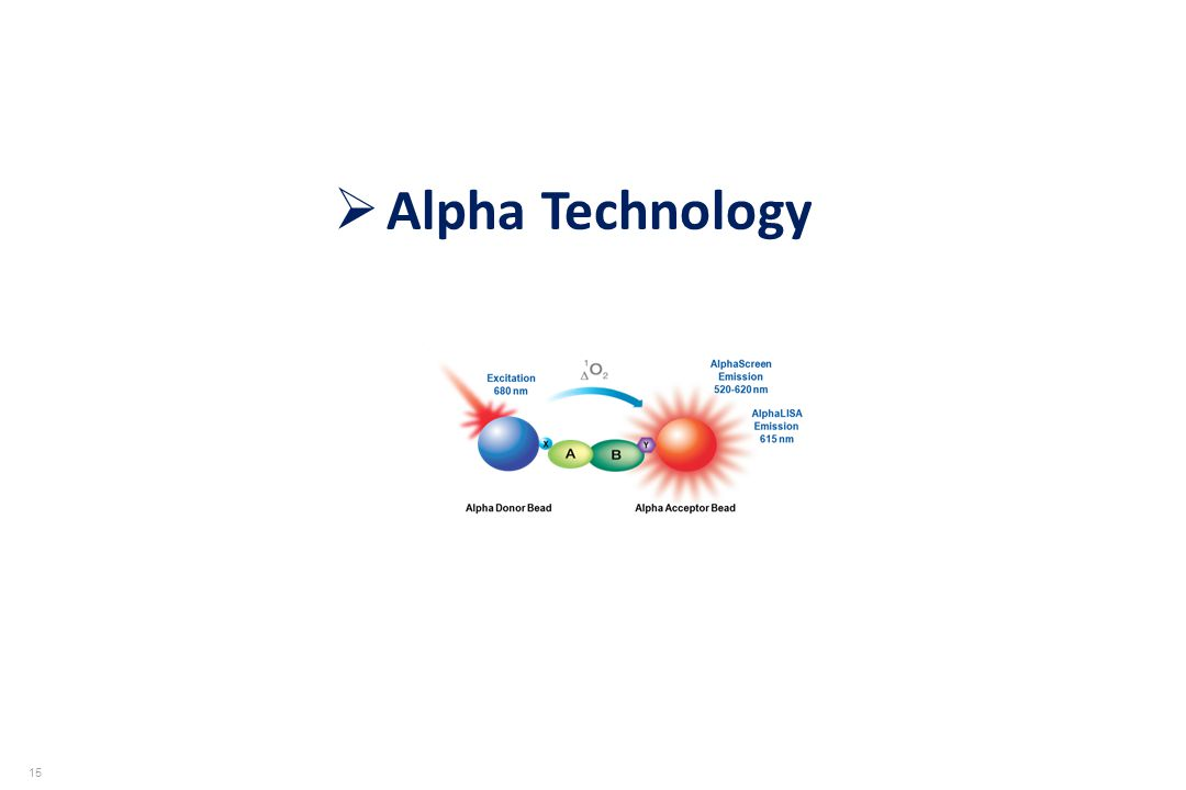 Alpha Technology 15