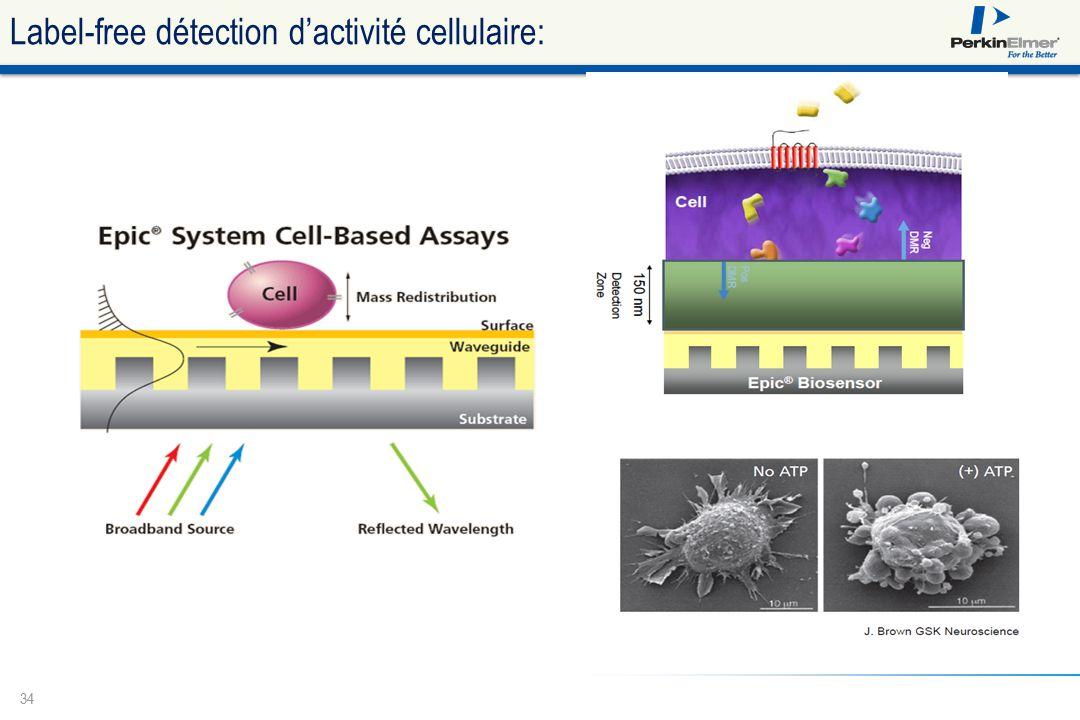34 Label-free détection d'activité cellulaire: