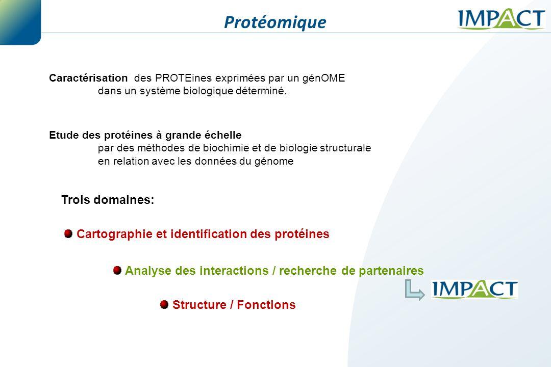 Caractérisation des PROTEines exprimées par un génOME dans un système biologique déterminé. Cartographie et identification des protéines Trois domaine