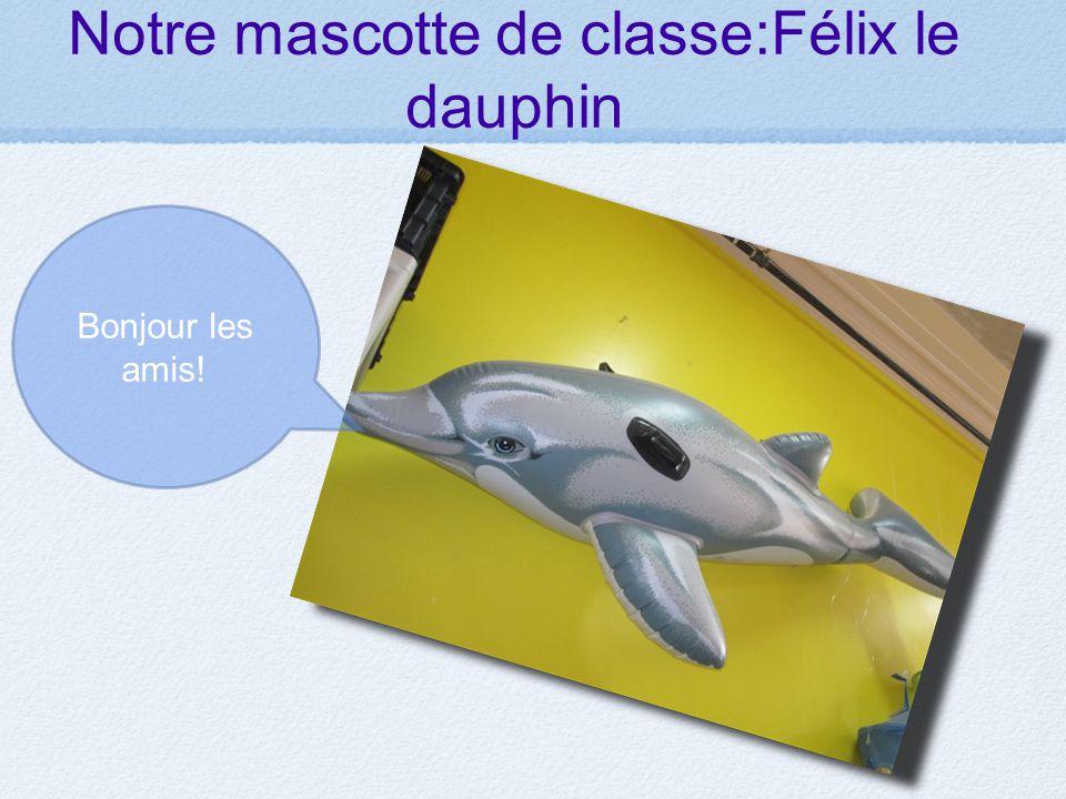 Notre mascotte de classe:Félix le dauphin Bonjour les amis!