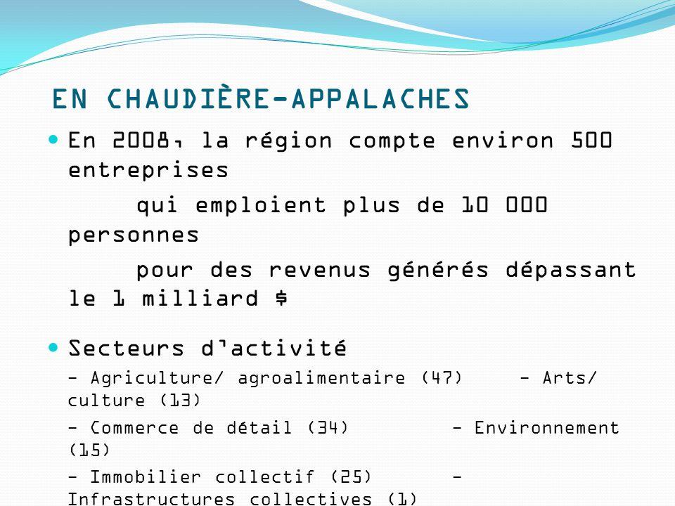 EN CHAUDIÈRE-APPALACHES En 2008, la région compte environ 500 entreprises qui emploient plus de 10 000 personnes pour des revenus générés dépassant le 1 milliard $ Secteurs d'activité - Agriculture/ agroalimentaire (47)- Arts/ culture (13) - Commerce de détail (34)- Environnement (15) - Immobilier collectif (25)- Infrastructures collectives (1) - Loisirs/ tourisme (47)- Manufacturier (5) - Médias/ communications (25)- Ressources naturelles (2) - Santé (7)- Services aux personnes (104) - TIC (8)- Transport (8)