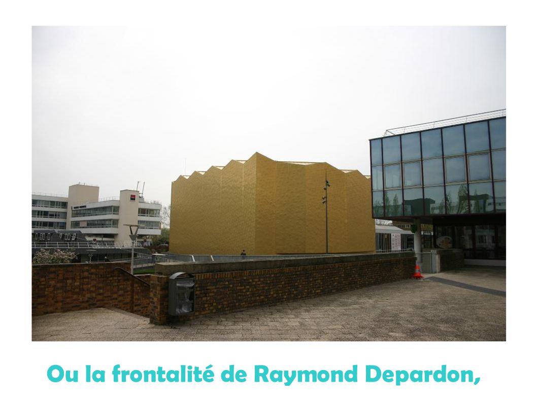 Ou la frontalité de Raymond Depardon,