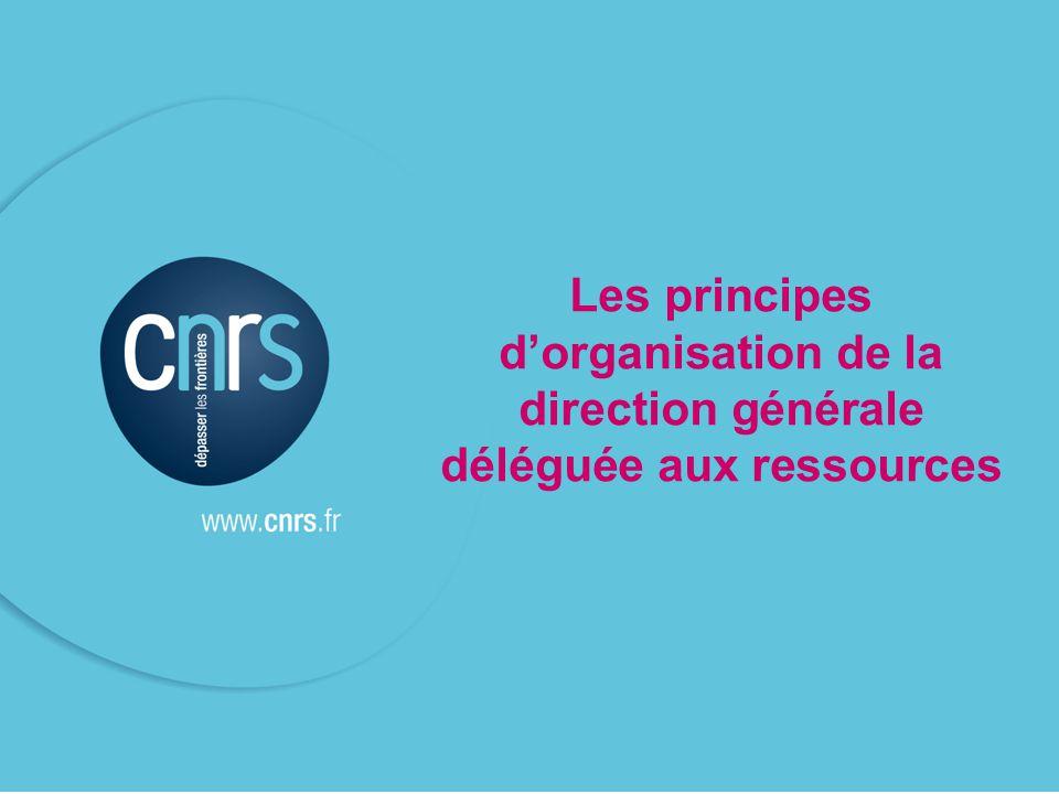 Les principes d'organisation de la direction générale déléguée aux ressources