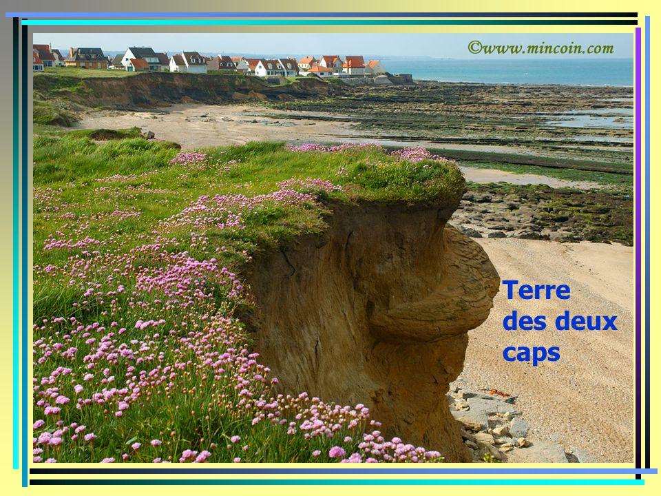Plage de wissant côte d'Opale